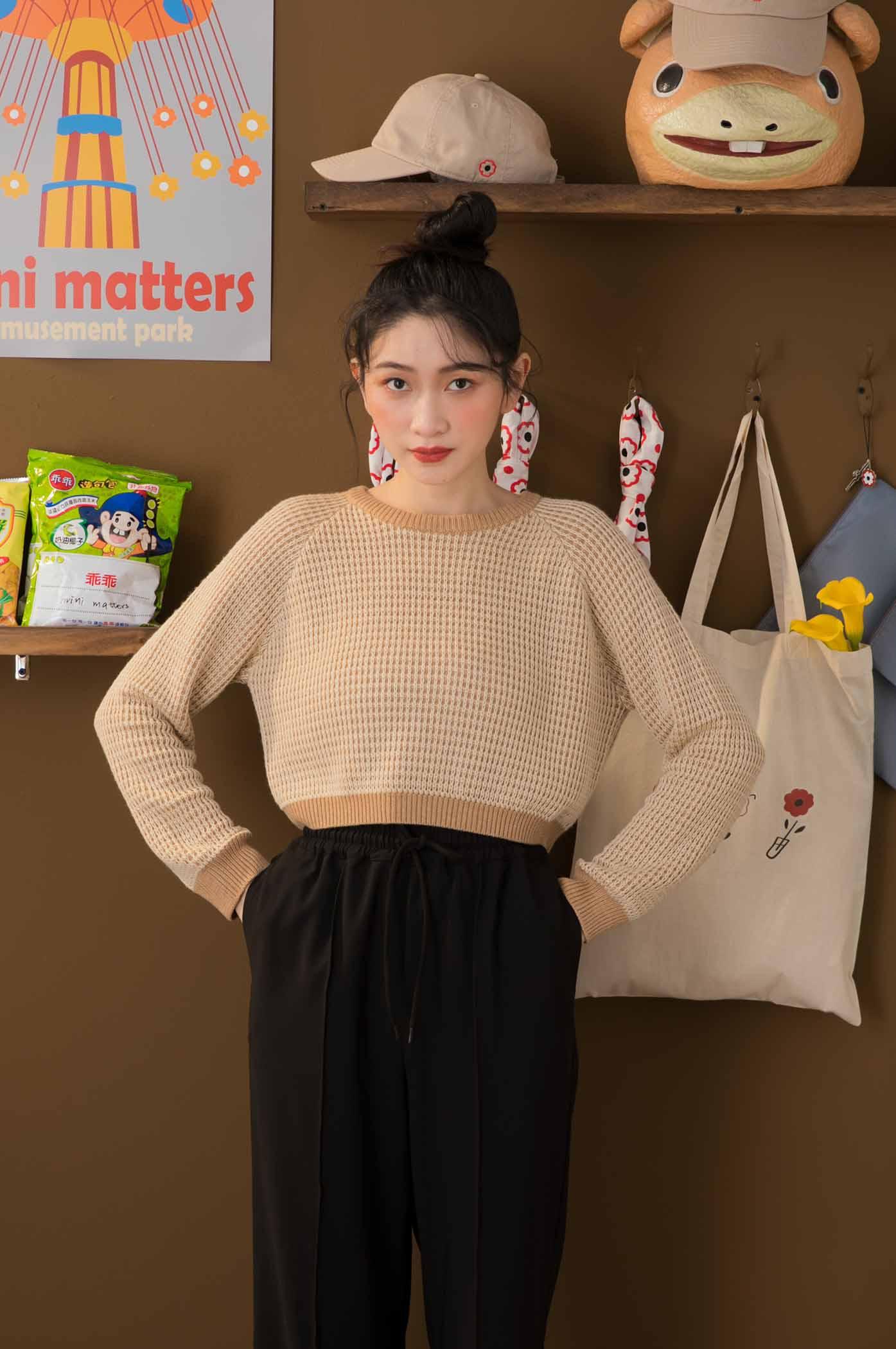 雙色針織短版毛衣